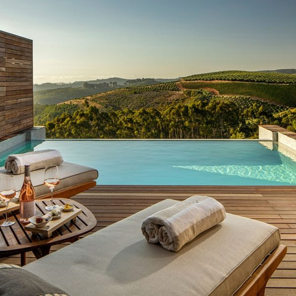 Superior-Lodge-Pool-and-terrace-at-Delaire-Graff-Estate-luxury-hotel-stellenbosch